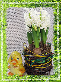 Hyacinthus and The Duckling Greeting Card by Ausra Huntington nee Paulauskaite