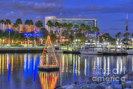 David Zanzinger - Hyatt Hotel Night Skyline Long Beach