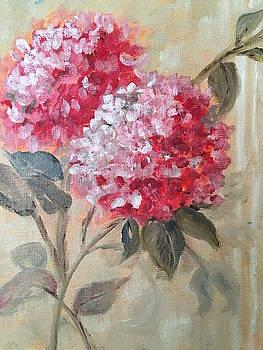 Hydranga by Sharon Schultz