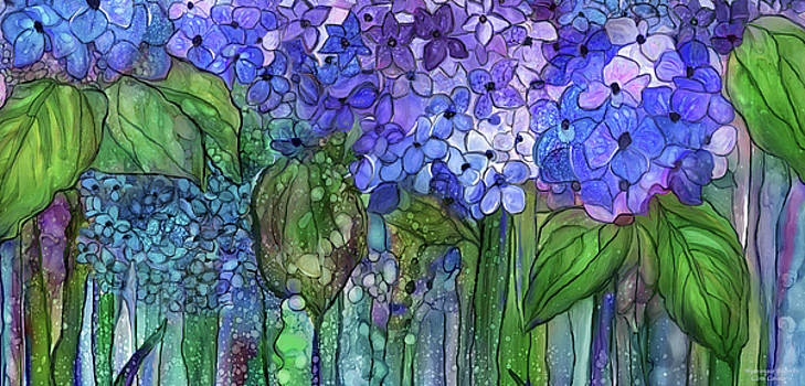 Hydrangea Bloomies 4 - Blue by Carol Cavalaris