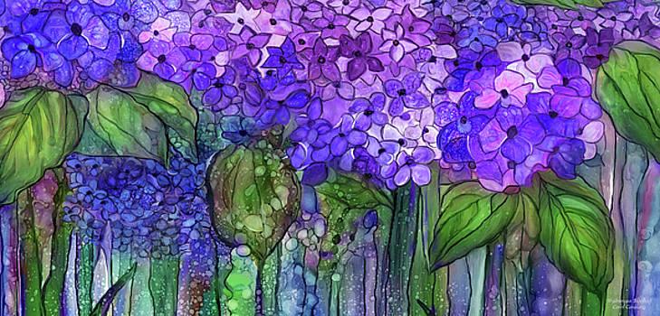 Hydrangea Bloomies 4 - Purple by Carol Cavalaris