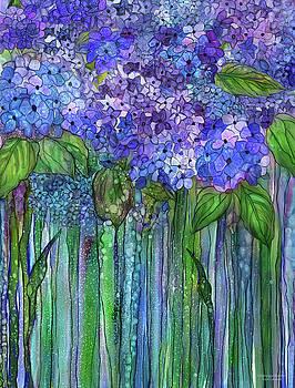 Hydrangea Bloomies 1 - Blue by Carol Cavalaris