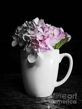 Hydrangea in white coffee cup by Ella Kaye Dickey