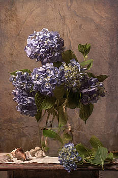 Hydrangea Obsession by Jerri Moon Cantone