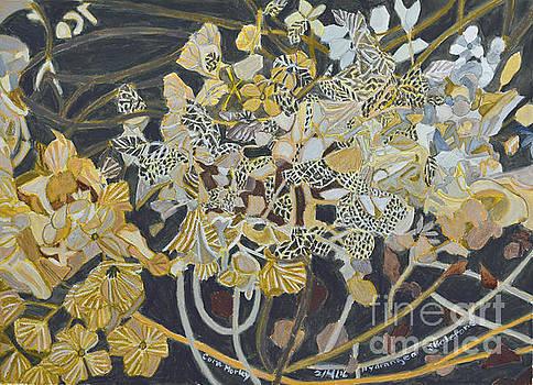Hydrangea Skeletions by Cora Morely Eklund