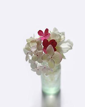 Hydrangeas and Gardenia in Aqua Glass Bottle by Brooke T Ryan