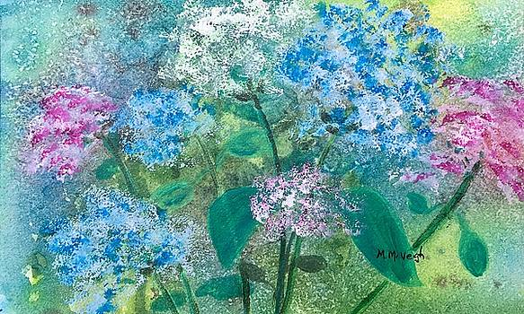 Hydrangeas by Marita McVeigh