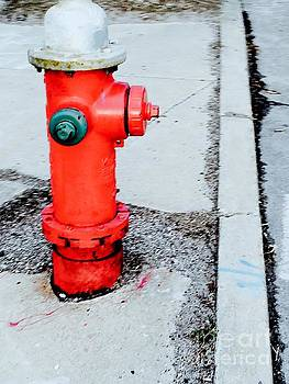 Hydrant by Robin Lewis