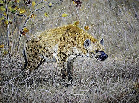 Hyena by Manuel Lopez