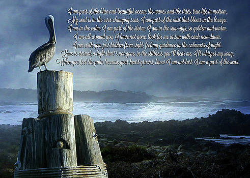 I Am a Part of the Sea Poem  by Stephanie Laird