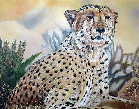 I am Cheetah 2 by Marilyn  McNish