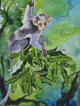 I am Free by Akhilkrishna Jayanth