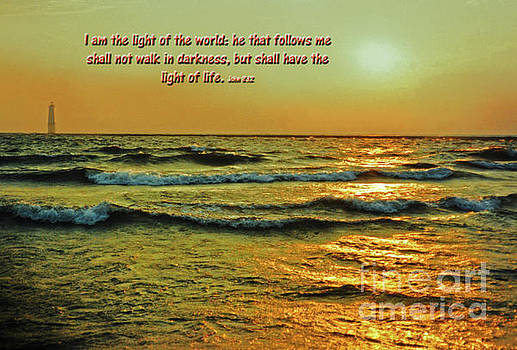 I Am The Light Of The World by Lydia Holly