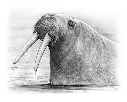 Greg Joens - I am the Walrus