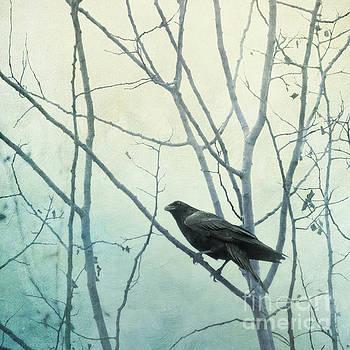 I am watching you by Priska Wettstein