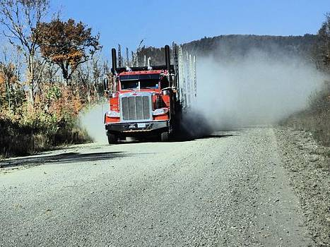 I art truck in Maine woods  by Scott Welton