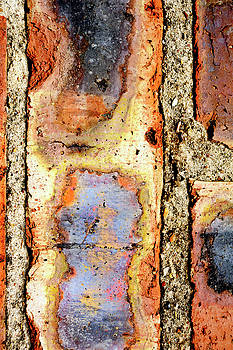 I Brake for Bricks by Ross Odom