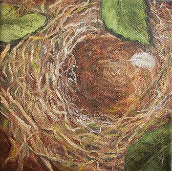 I Built You a Nest by Irene Corey