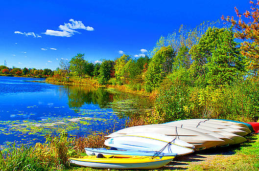 I Canoe You by Collette Rogers