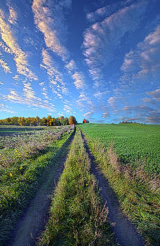 I Doubted That I Would Ever Come Back by Phil Koch