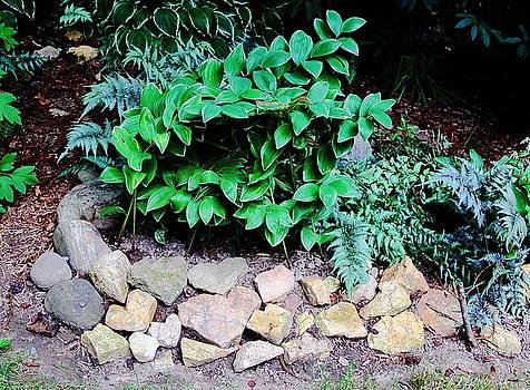 Allen Nice-Webb - I Heart Gardening