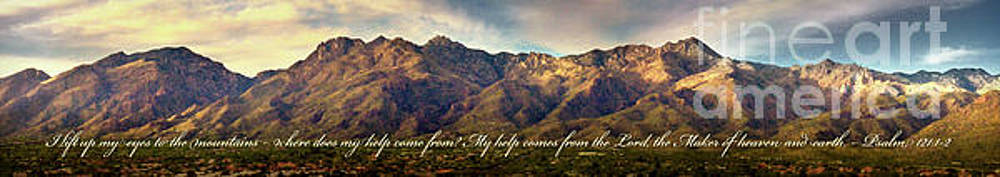 I Lift My Eyes to the Mountains by Shevon Johnson