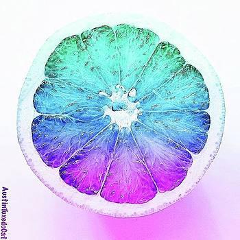 I Like My #grapefruit #colorful by Austin Tuxedo Cat