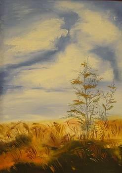 I love autumn by Beata Rosslerova