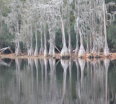I Love Cypress by Kent Dunning