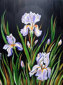 I love Irises by Roberto Gagliardi