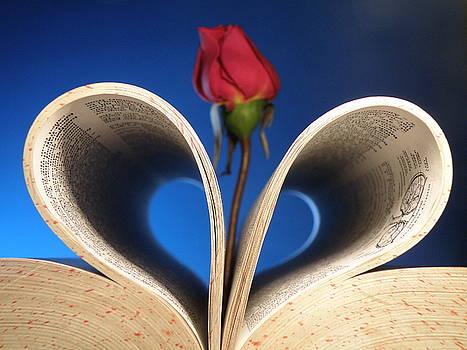 I luv Books by Salman Hussain