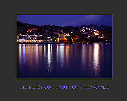 I Reflect On Beauty Of The World by Donna Corless