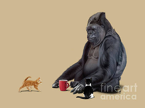 I Should Koko Colour by Rob Snow