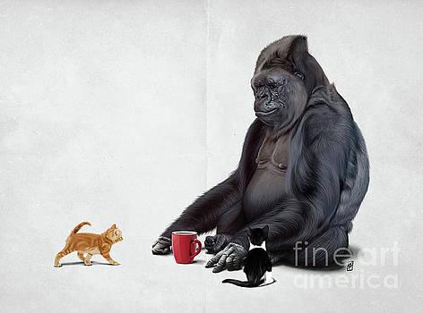 I Should Koko Wordless by Rob Snow
