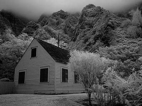 Iao Valley  by David Attenborough