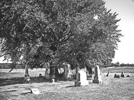 Iberia Grave Stones by Peter  McIntosh