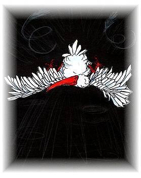 Ibis down by Carol Allen Anfinsen