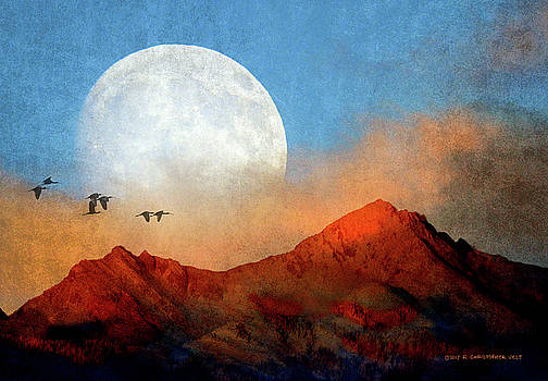 Ibis Pass Across Moon by R christopher Vest