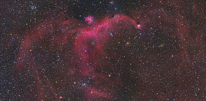 IC 2177 - Seagull mosaic by Dennis Sprinkle