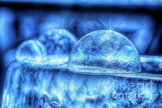 Ice Age 4 by Veikko Suikkanen