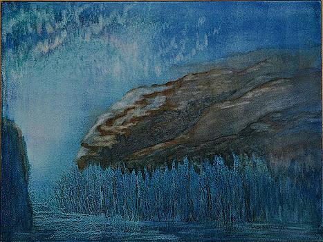 Ice Age Dream I by Wicki Van De Veer