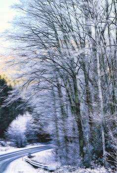 Ice and Trees by Rick Lawler