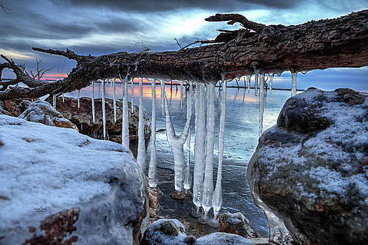 Ice Cage by Crystal Socha