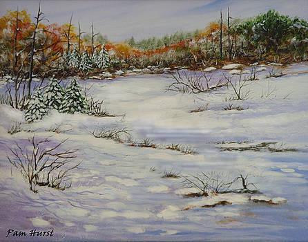 Ice Cream Creek by Pam Hurst