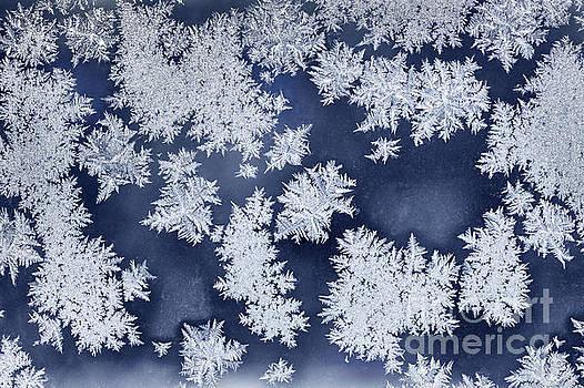 Elena Elisseeva - Ice crystals