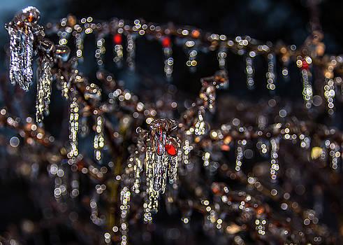 Ice Diamonds by Kevin Myron