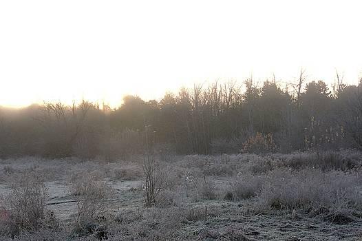 Valerie Kirkwood - Ice Fog at Sunrise