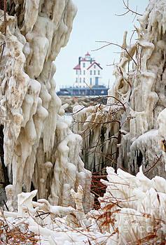 Ice Lighthouse by Debbie Parker