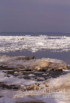 Ice on Lake Huron by Kathy DesJardins