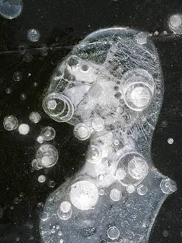 Steven Ralser - Ice Portrait - Lake Wingra - Madison - Wisconsin